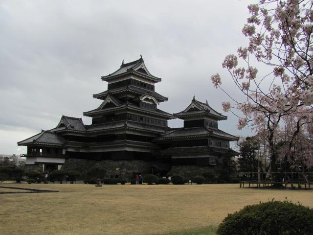 松本城桜2015.4.5D