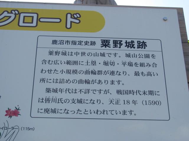粟野城2015.5.10D