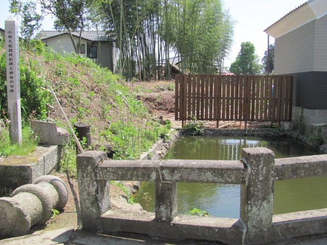 須賀川発掘調査2015.5.17K