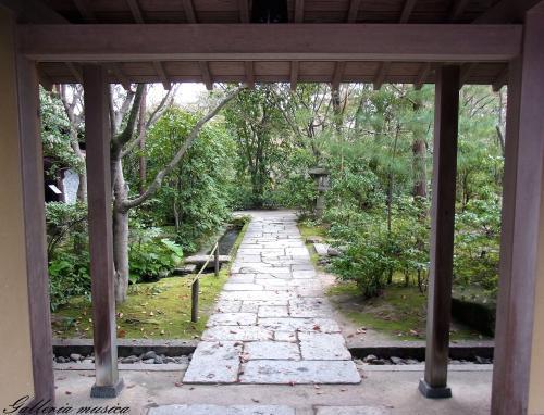 日本の春9