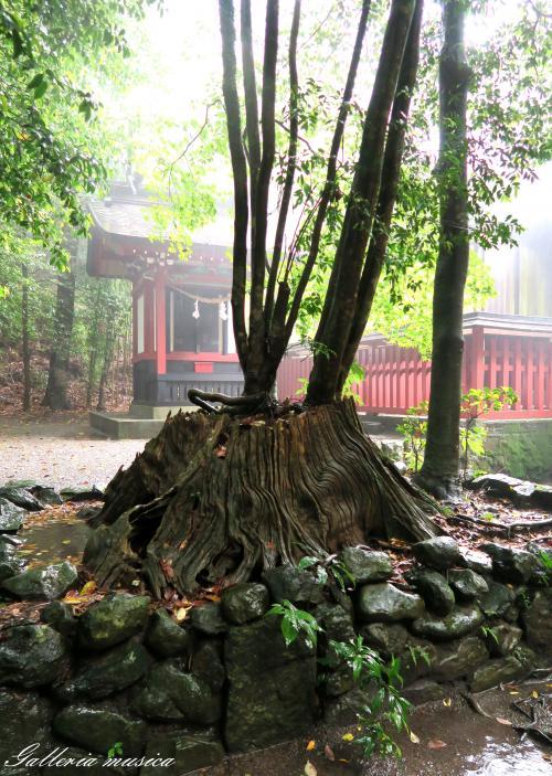 霧島東神社8