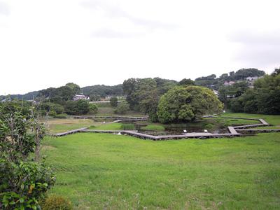 DSCN厳島湿生公園6125