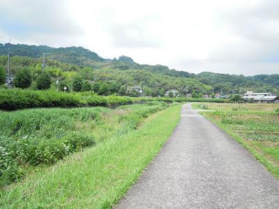 中村川川沿い