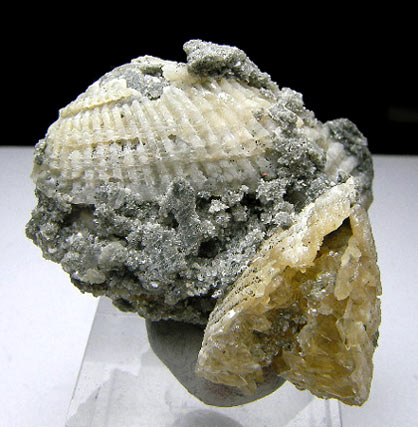 No.693 Calcite