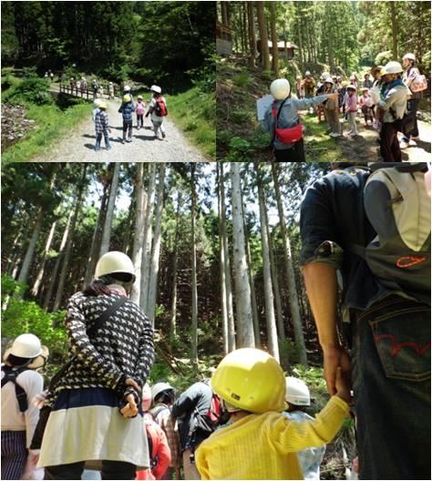 山県楽しい・舟伏山