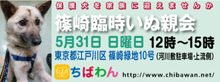 event-150531-shinozakirinji_banner_01.jpg