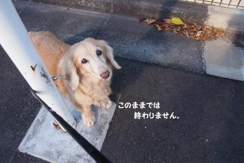 2015011801.jpg