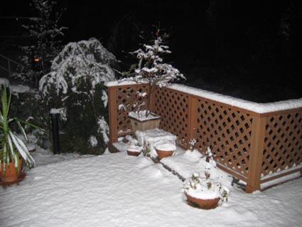 2月9日また雪だ