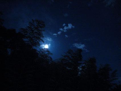 七夕の夜2