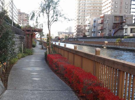 今の小名木川