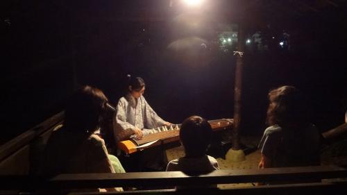 箏演奏『ほたるの夕べ』1