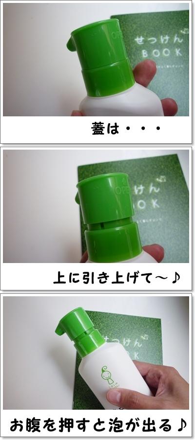 P1140060-vert.jpg