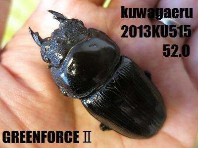 2013KU515520.jpg
