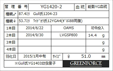 yg1420-2-510早期