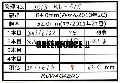 2013KU515♀520①