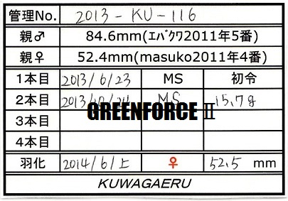 2013116♀525①