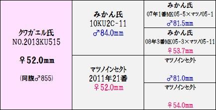 2013515♀520②