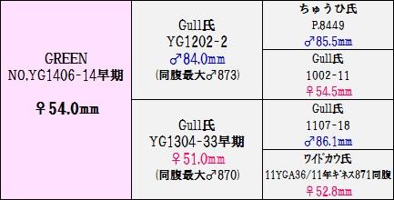 YG140614540背景図