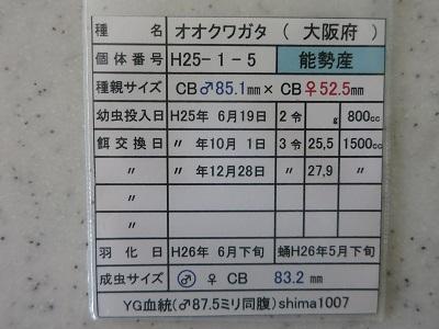 IMG_5279.jpg