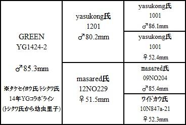 YG1424-2.jpg