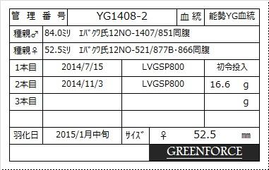 yg1408-2-525.jpg