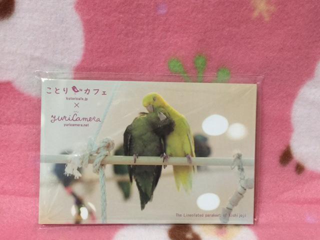 かわいいメモ帳♪