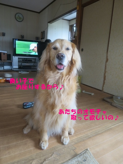 IMG_4385.jpg