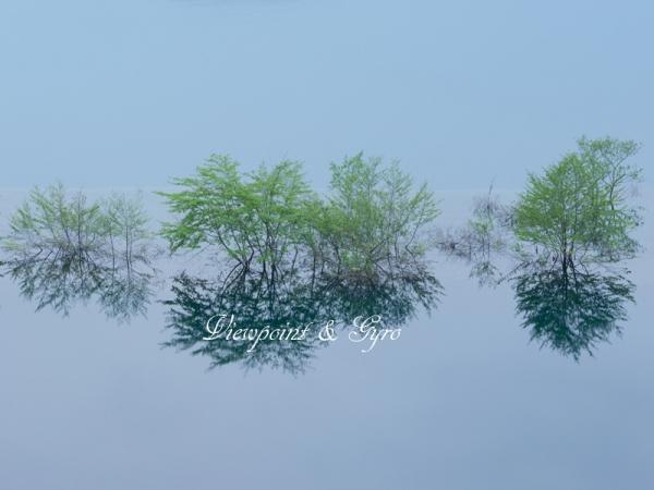 早朝の奥四万湖