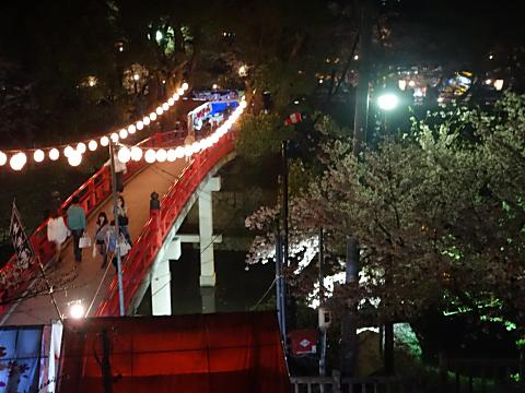 上から見た神橋