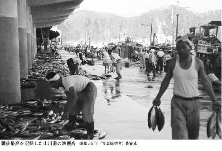 昔の山川港