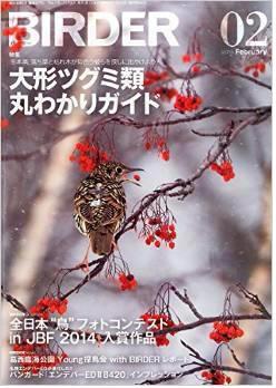 birder-2.jpg