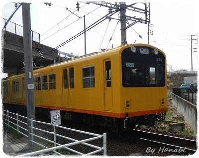 DSCN4230 (2)