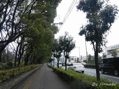 DSCN2714.jpg