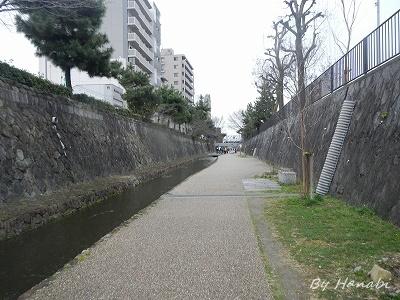 DSCN3259.jpg