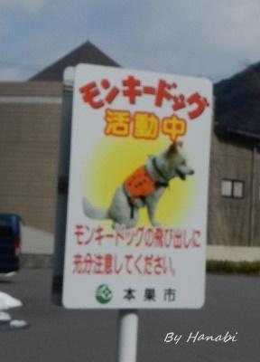 DSCN3608.jpg
