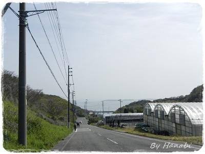 DSCN5319.jpg