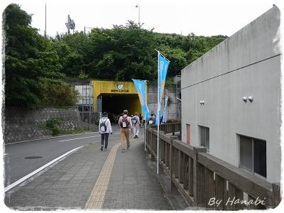 DSCN7334.jpg