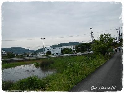 DSCN7378.jpg