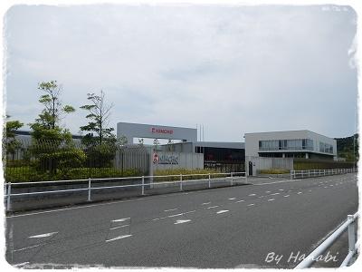 DSCN7595.jpg
