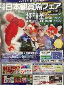第33回日本観賞魚フェアポスター
