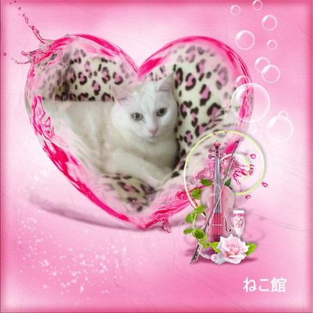 blog2_201503030954348fa.jpg