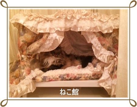 blog5_2015051910441995f.jpg
