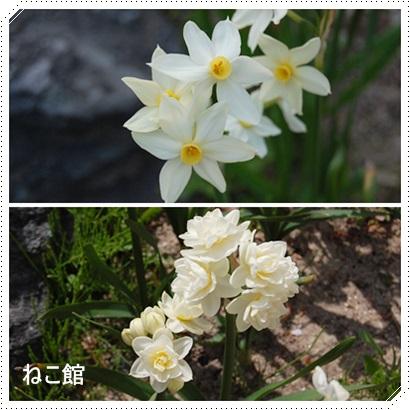 blog_20150501084422b04.jpg