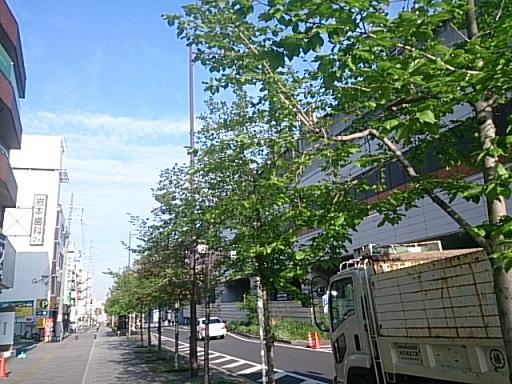 DSC_2352b.jpg