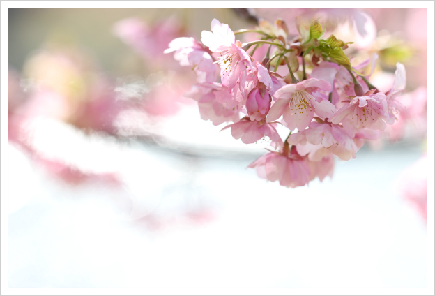 2015-03-04-08.jpg