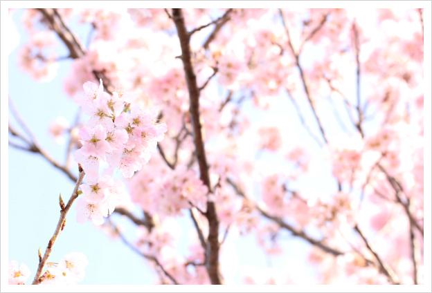 2015-03-25-04.jpg
