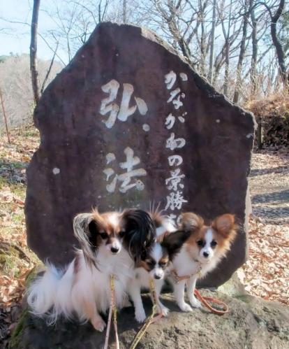 5-2015_0110弘法山0025