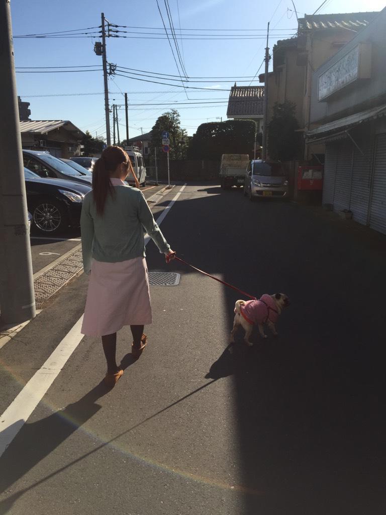 ぱちんこオリ術メガMIXの連載コラム「ここじょぶ。」の撮影、看護師姿で犬の散歩をする成瀬心美