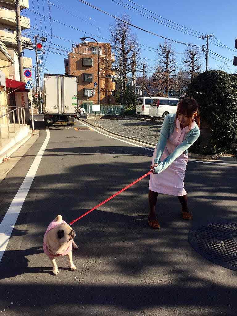 ぱちんこオリ術メガMIXの連載コラム「ここじょぶ。」の撮影、ナースコスプレで犬の散歩をする成瀬心美