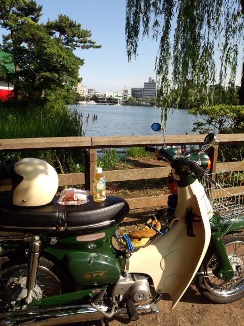 20150625_SENZOKUIKE1.jpg